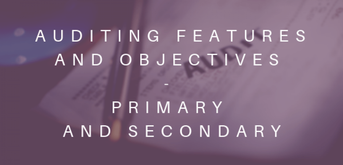 Auditing features and objectives